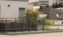 Neue Freiräume im Spannungsfeld von Architektur, Gebäudeaufwertung und Lebensqualität